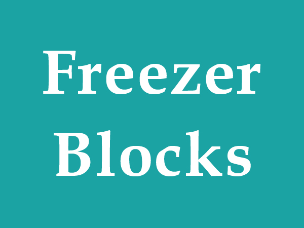 freezer blocks camping