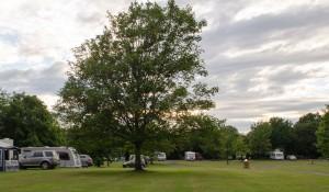 tanner_farm_camping_caravan_19